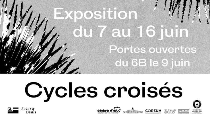 cycles croisés 6B.jpg